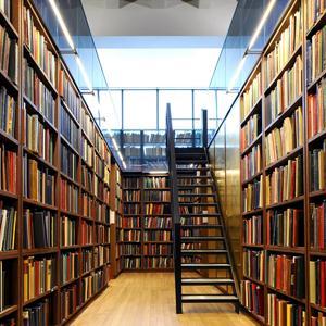 Библиотеки Ириклинского